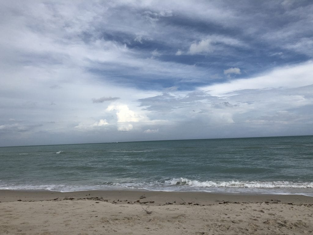 Things To Do in Miami by Liz in Los Angeles