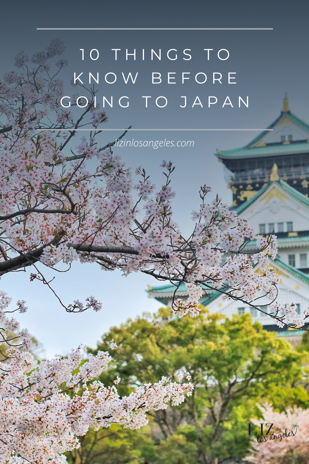 Things to Know Before Going to Japan, a blog post by Liz in Los Angeles, Los Angeles Lifestyle Blogger: an image of sakura tree and shrine