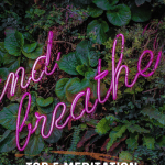 Top 5 Meditation Classes in LA by Liz in Los Angeles, Los Angeles Blogger, an image of a sign saying and breath on leaves