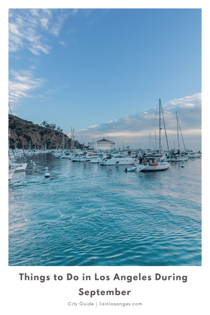 Top 7 Things to Do in Los Angeles in September, a blog post by Liz in Los Angeles, an image of boats in Catalina Islands