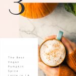 The Best Vegan Pumpkin Spice Latte in LA